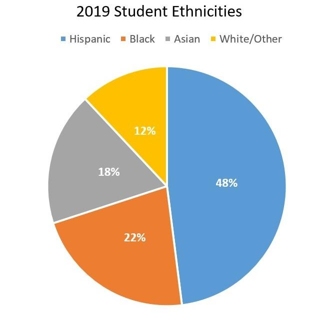 graph of student ethnicities